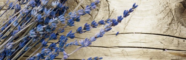glass lavender