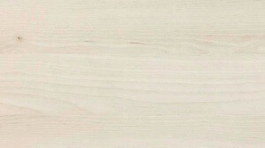 B21 Kiruna birch