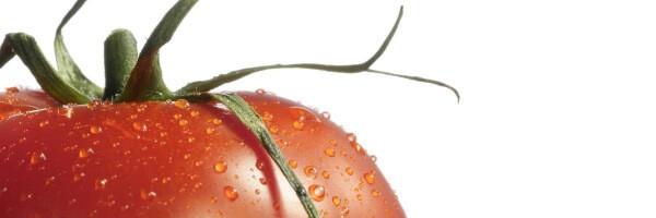 glass tomato