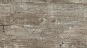 T23 - Driftwood